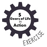 The 5 Gears of Life in Action Exercise