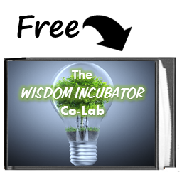 The Co-Lab Wisdom Incubator eBook